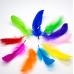 ДЭ-29006 Перья цветные