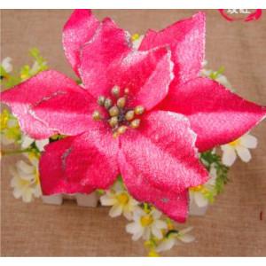 Рождественский цветок красный